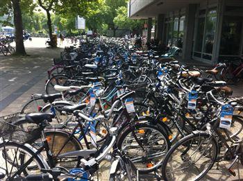 FlixBus_Bikecards_6.JPG