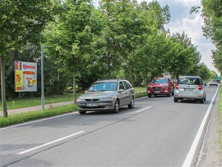 Dessauer Landstr  60 (L 63), 06385,