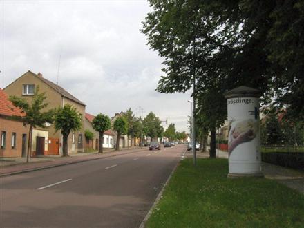 Sebastian-Bach-Str., 06869, Innenstadt
