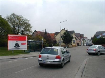 Hofheimer Str. / Nibelungenstr., 68642, Stadtmitte