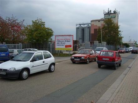 Waldgartenstr. 21 quer, 68642, Stadtmitte